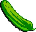 pickle2